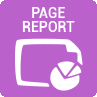 Page Report