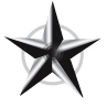 Silver Star I - Accomplished something cool.